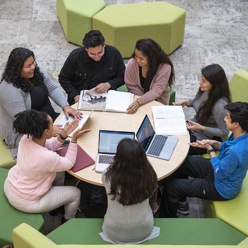A group of students studying in the Bioscience and Engineering Education facility at the Universities at Shady Grove